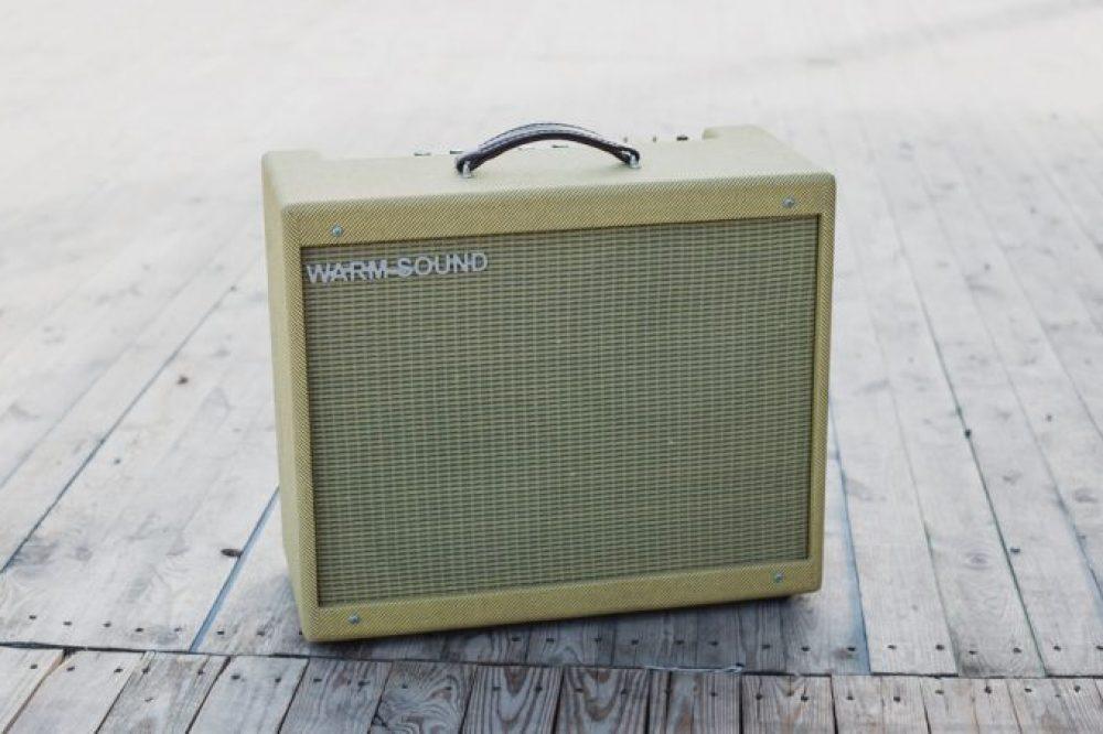 Mojotone 5E3 Valve Tube Guitar Amp Kit Review